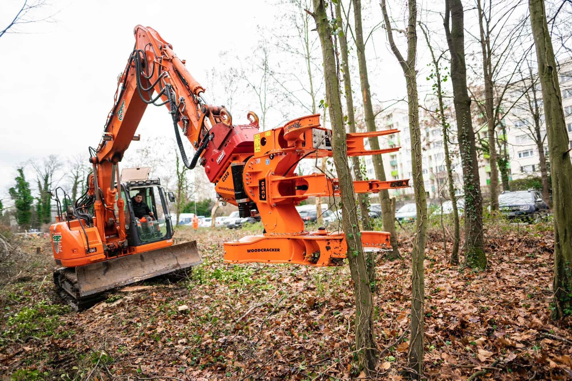 feger-woodcracker-2000px-17